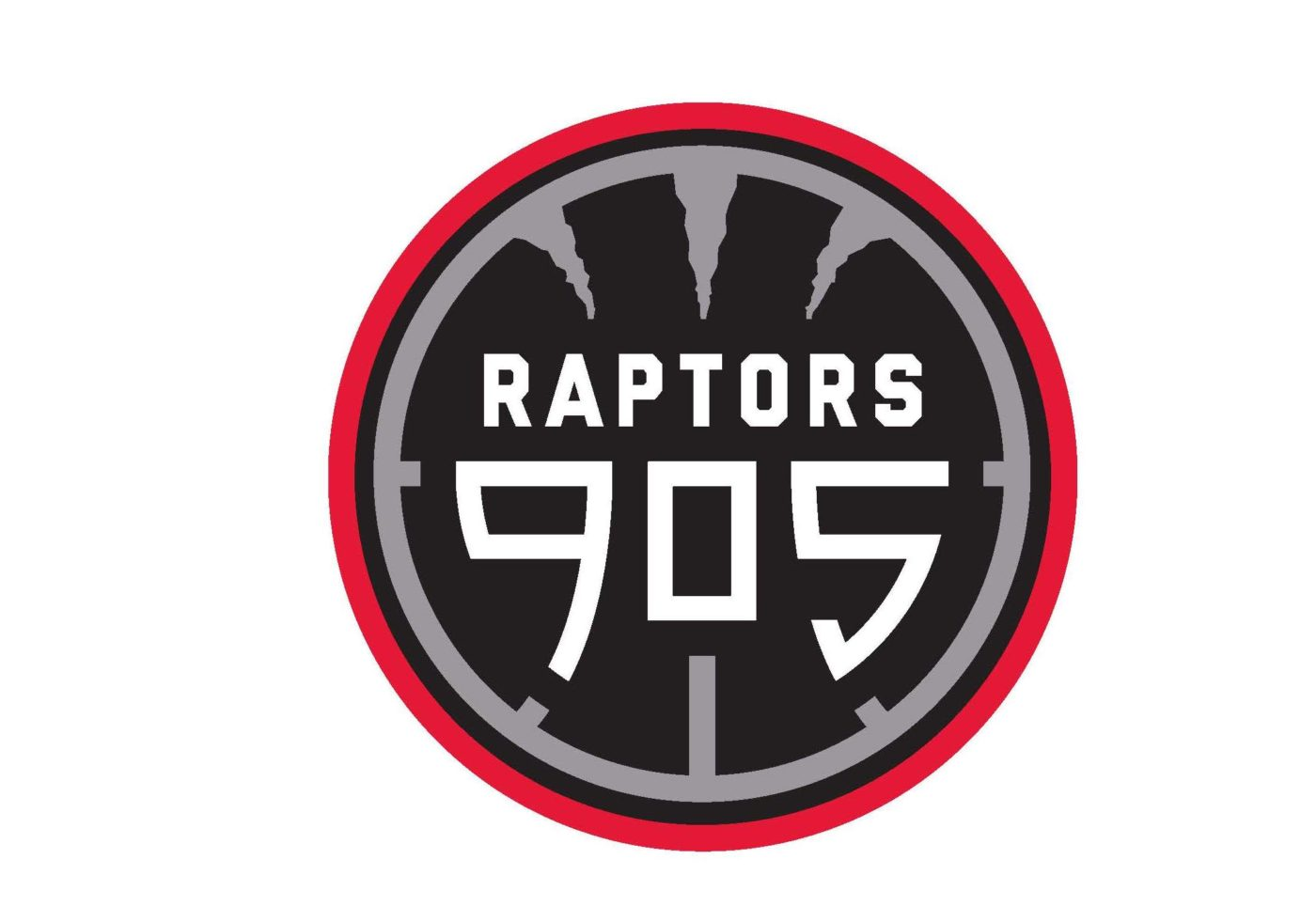 THE MISSISSAUGA POWER JOIN MLSE TO BECOME RAPTORS 905